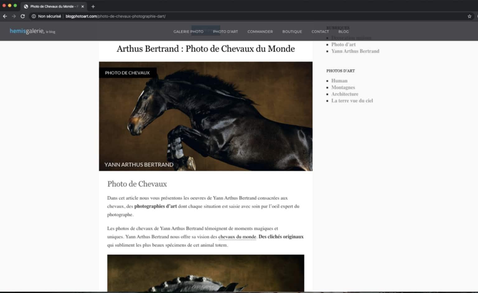 Rédaction d'un article pour une photo d'art sur les Chevaux par Yann Arthus Bertrand