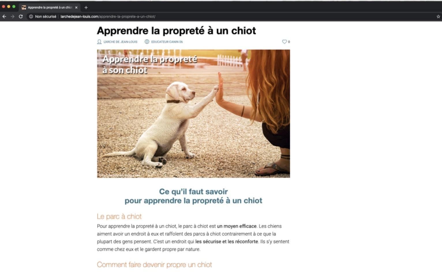 Rédaction d'un article sur l'éducation canine d'un chiot